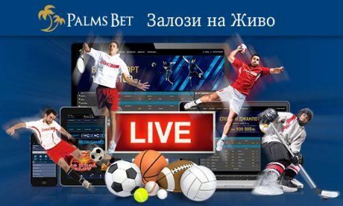 Залози на живо в Palms Bet